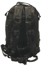Picture of Backpack 30343V Assault II Camo