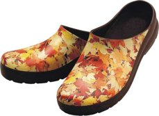 Picture of Autumn Clog