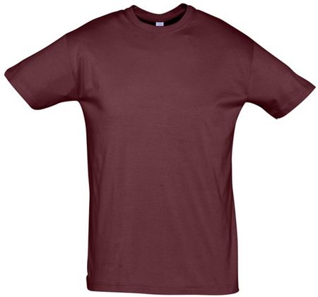 Picture of T-shirt REGENT / Burgundy