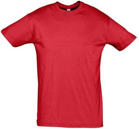 Picture of T-shirt REGENT / Red