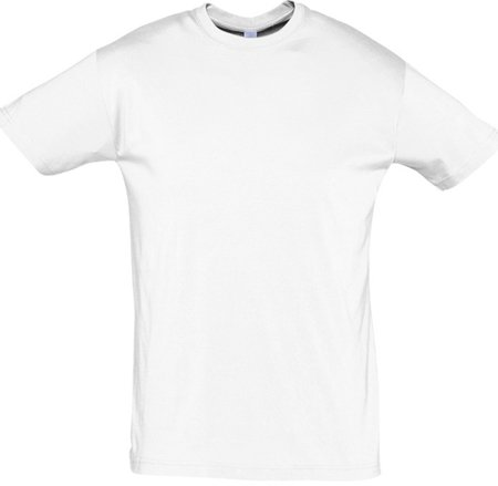 Picture of T-shirt REGENT / White