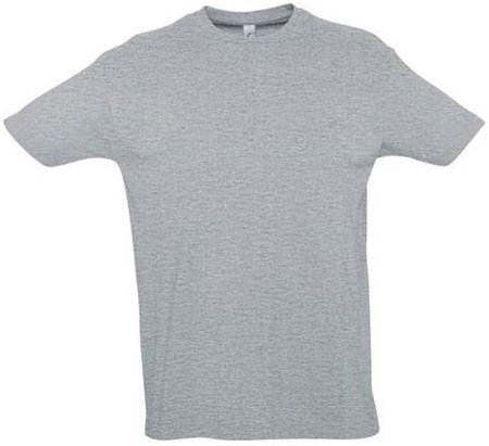 Picture of T-Shirt IMPERIAL / Grey Melange
